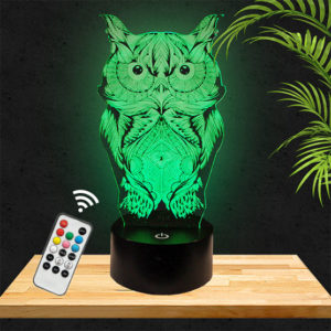 Lampe 3D Chouette hibou lampephoto.fr